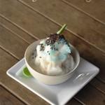 Best Ever Snow Ice Cream Recipe