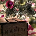 Mantry Food Subscription Box Review