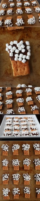 mini smores dippers