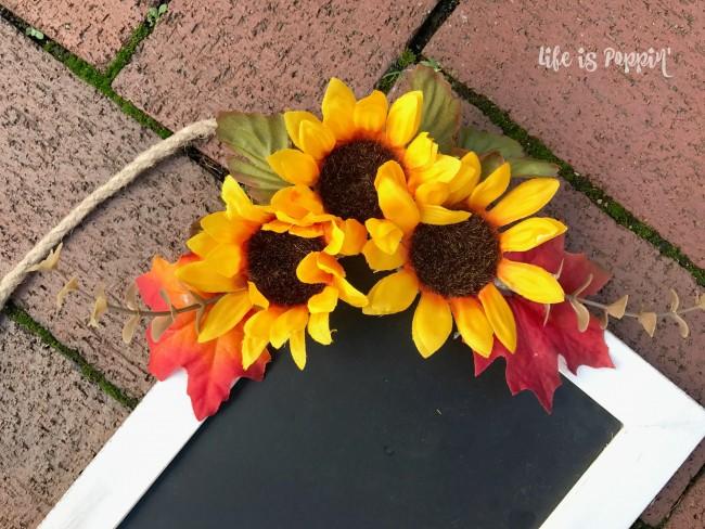 fall-sunflowers