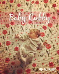 Cute and Collected at Baby Cubby