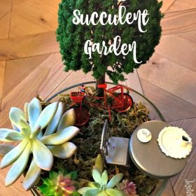 Easy Succulent Garden DIY – Perfect for a Tea Party!