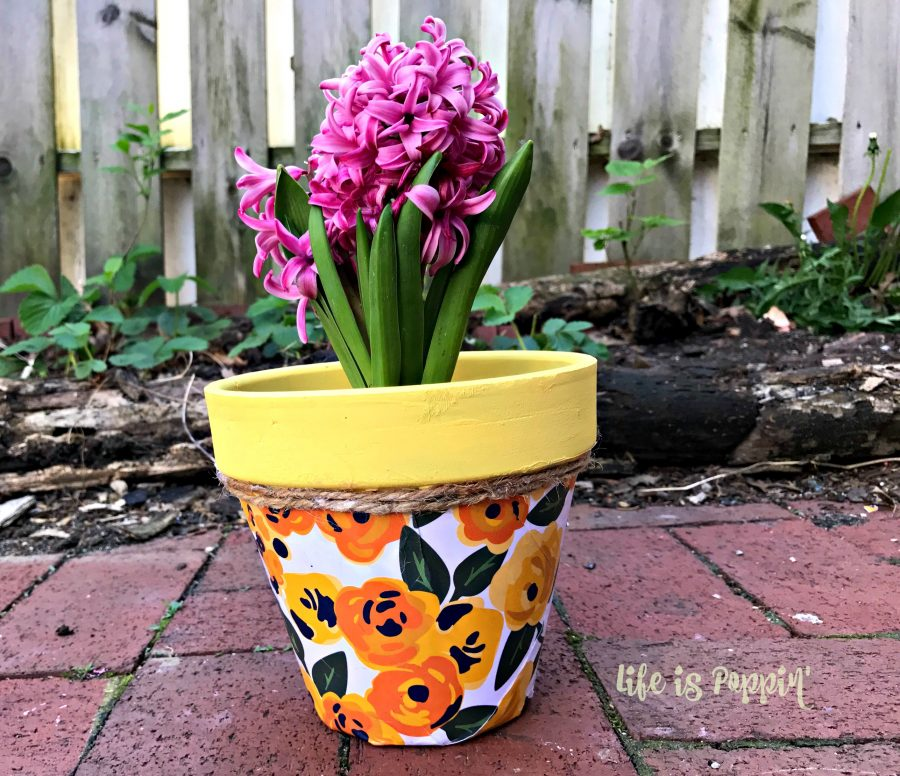 Cheap-Mothers-Day-ideas